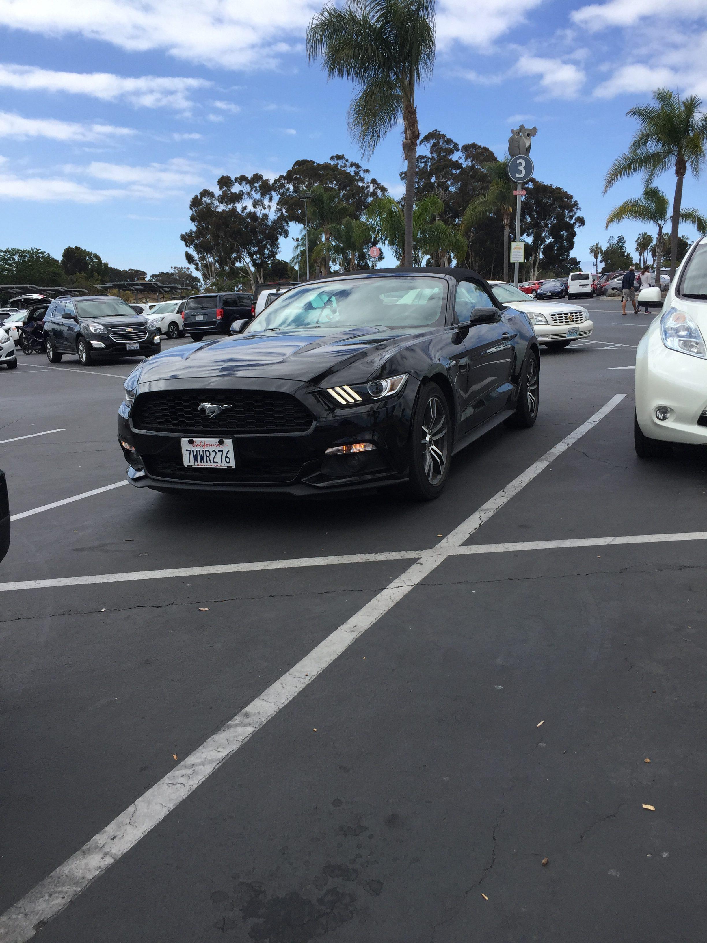 Ford Mustang lejebil